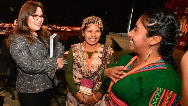 Standard poblaciones indigenas mendieta mimp cepal