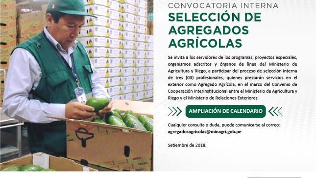 Ampliación de Convocatoria Interna: Selección de Agregados Agrícolas