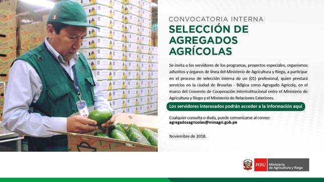Convocatoria Interna de Selección de Agregado Agrícola